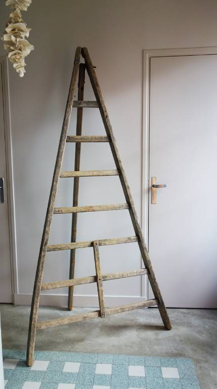 Ancienne échelle | Puces Privées