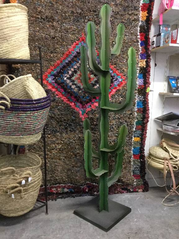 Cactus   Puces Privées
