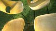 Chaises Tulipe de Pierre Guariche, Chaises - tabourets, Sièges | Puces Privées