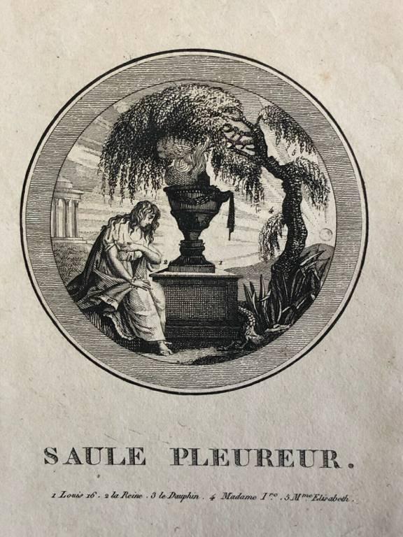 SAULE PLEUREUR SEDITIEUX émigré c 1795 Roi Louis XVI Marie-Antoinette Révolution | Puces Privées