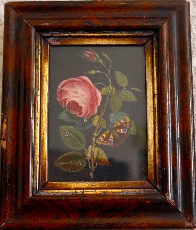 Petite gravure botanique   Puces Privées