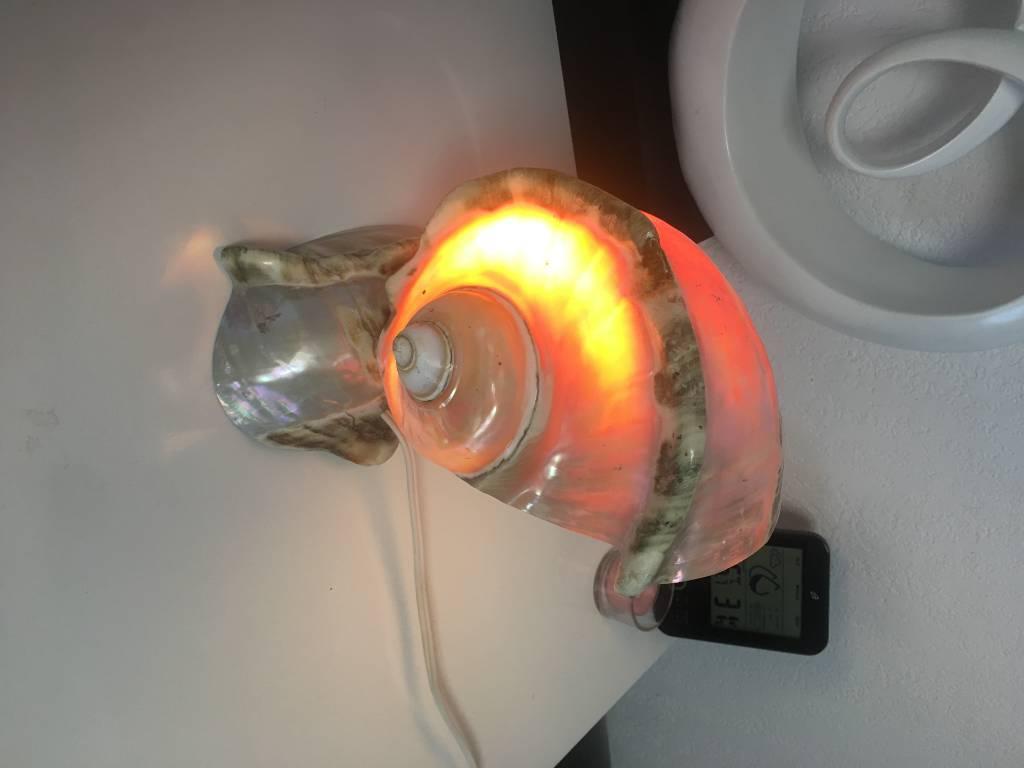 lampe de chevet en coquillage veritable   Puces Privées