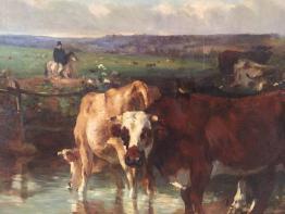 Brocante 49, vitrine Vitrine de yves DELAUNE, brocante Maine-et-Loire   Puces Privées