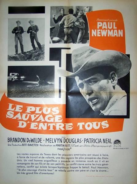 affiche cinéma Le plus sauvage d'entre tous, Affiches anciennes (cinéma, theâtre, publicitaire), Image   Puces Privées