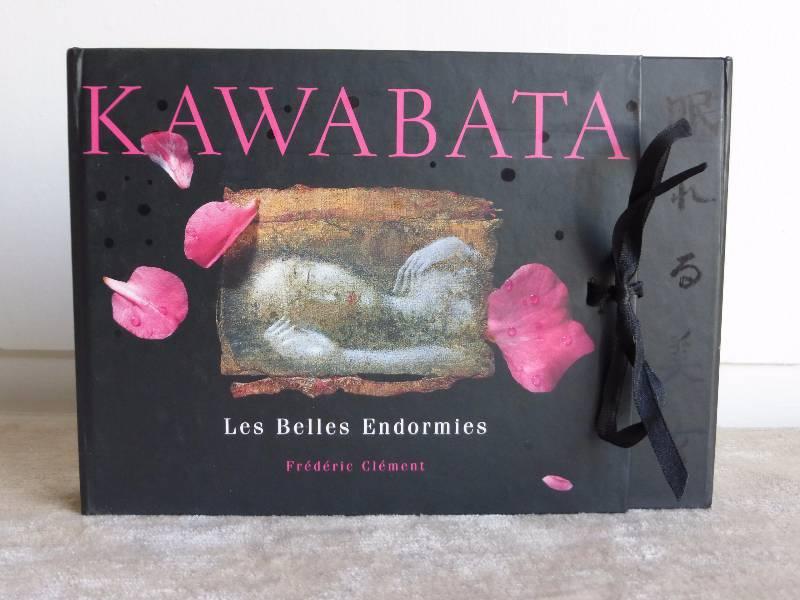 No - 165 -  Les Belles Endormies , KAWABATA  Yasunari , Clément Frédéric , édité par Albin Michel 1997, Livres rares (1ère édition, livres illustrés, tirages limités), Livres | Puces Privées