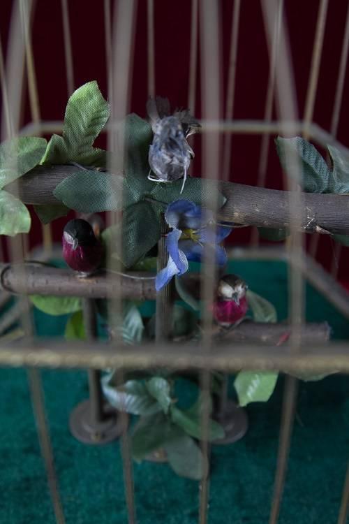 Cage à Oiseaux Musicale très Rare   Puces Privées