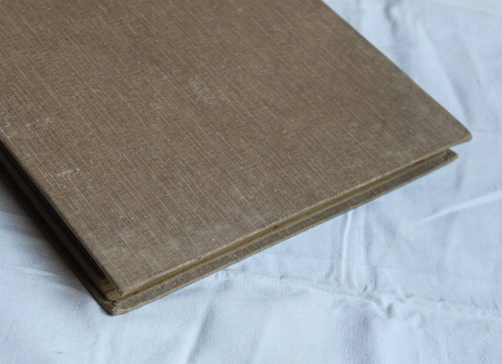 Album ancien Cartes Postales Art nouveau  à décor floral vers 1910 | Puces Privées