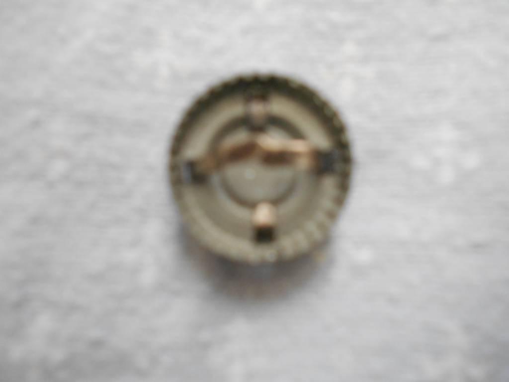 cocarde de casquette allemande d officier de 1 guerre   Puces Privées